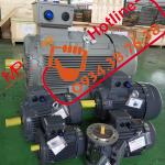 Động cơ điện 3pha, motor điện