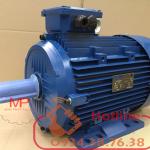 Motor động cơ điện 3PHA 0.37 KW -1/2HP 4pole cực 3phase