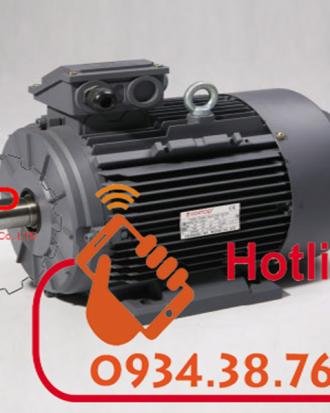 động cơ điện motor điện