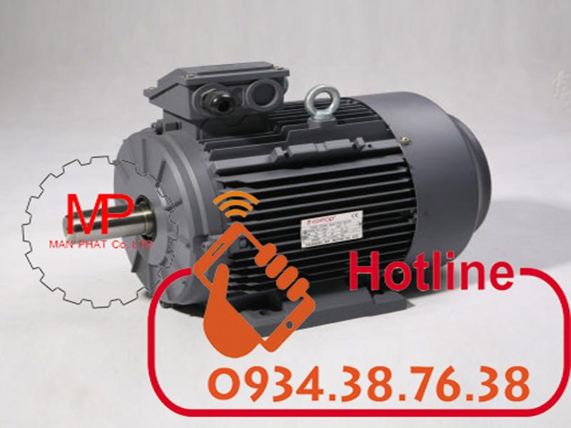 Động cơ điện 0.18kw 1/4hp 4pole chân đế