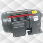 Motor giảm tốc (động cơ liền hộp số) 0.4kW 1/2HP 1/15