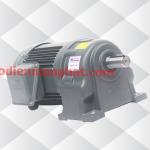 Motor giảm tốc (động cơ liền hộp số) 0.4kW 1/2HP 1/40