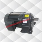 Motor giảm tốc (động cơ liền hộp số) 0.4kW 1/2HP 1/25