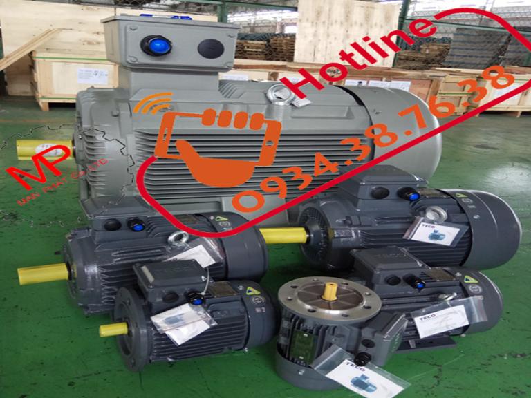 độngc ơ điện motor điện