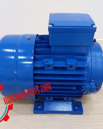 motor điện 3pha 4hp