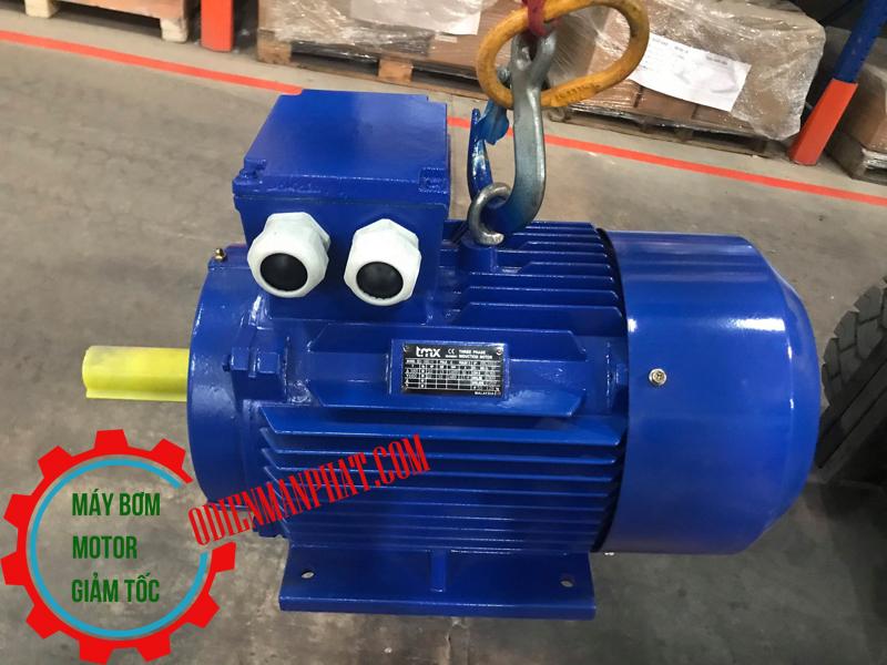 Motor động cơ điện 3PHA 37 KW - 50HP hoặc 50 mã lực (ngựa), Tốc độ vòng quay motor 1450 vòng/phút (4Pole hoặc 4 cực điện)
