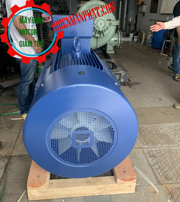 motor điện 3pha