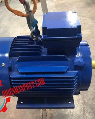động cơ mô tơ điện 60hp 45kw 1450v/p