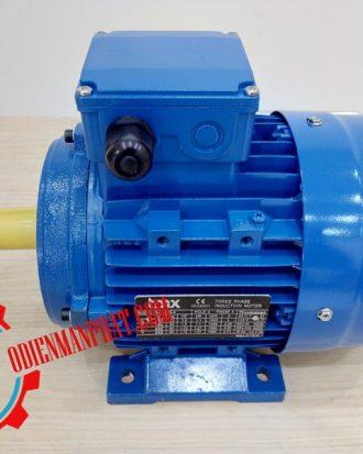 động cơ điện 7.5kw 10hp